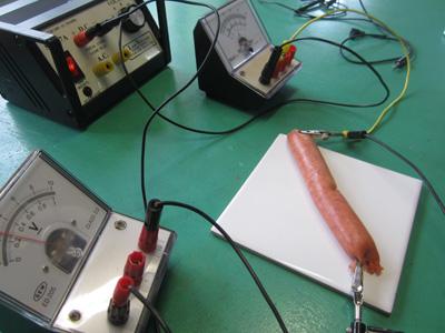 Senior Physics - Extended Experimental Investigations